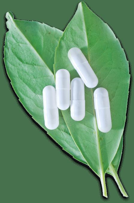 leaf pills